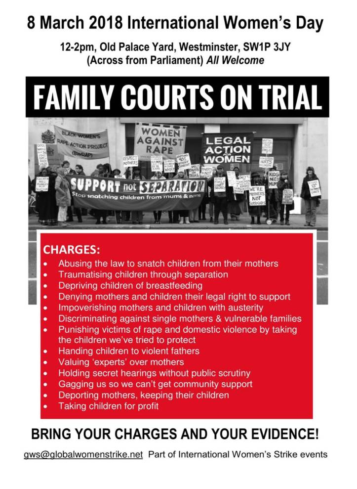 Family Courts on Trial jpeg